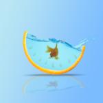 Cách hạ pH trong thủy sinh